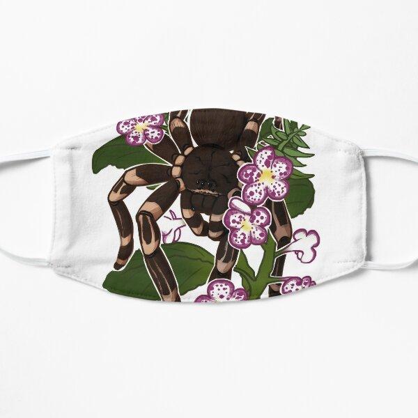 Acanthoscurria geniculata Mask