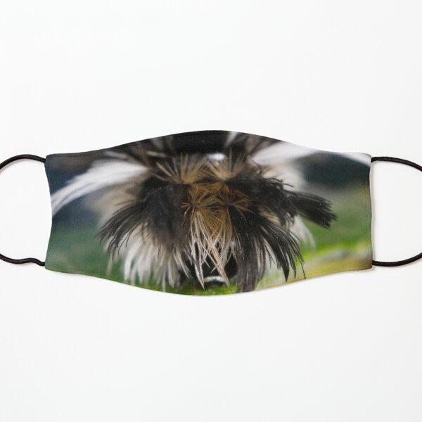 Milkweed Tussock (Tiger) Moth Hair Day Kids Mask