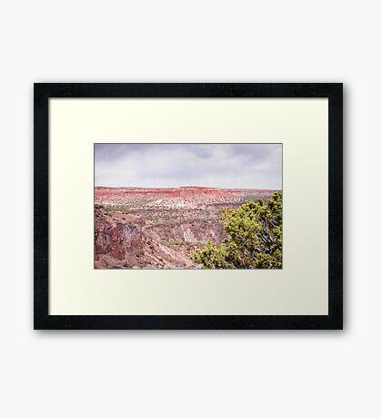 Rio Grande River Gorge Framed Print