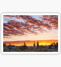 Colorful Sonoran Desert Sunrise Sticker
