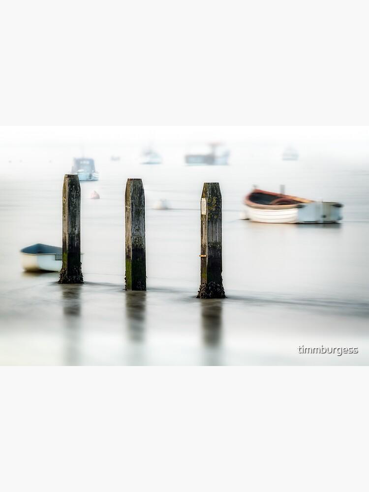 Three Posts by timmburgess