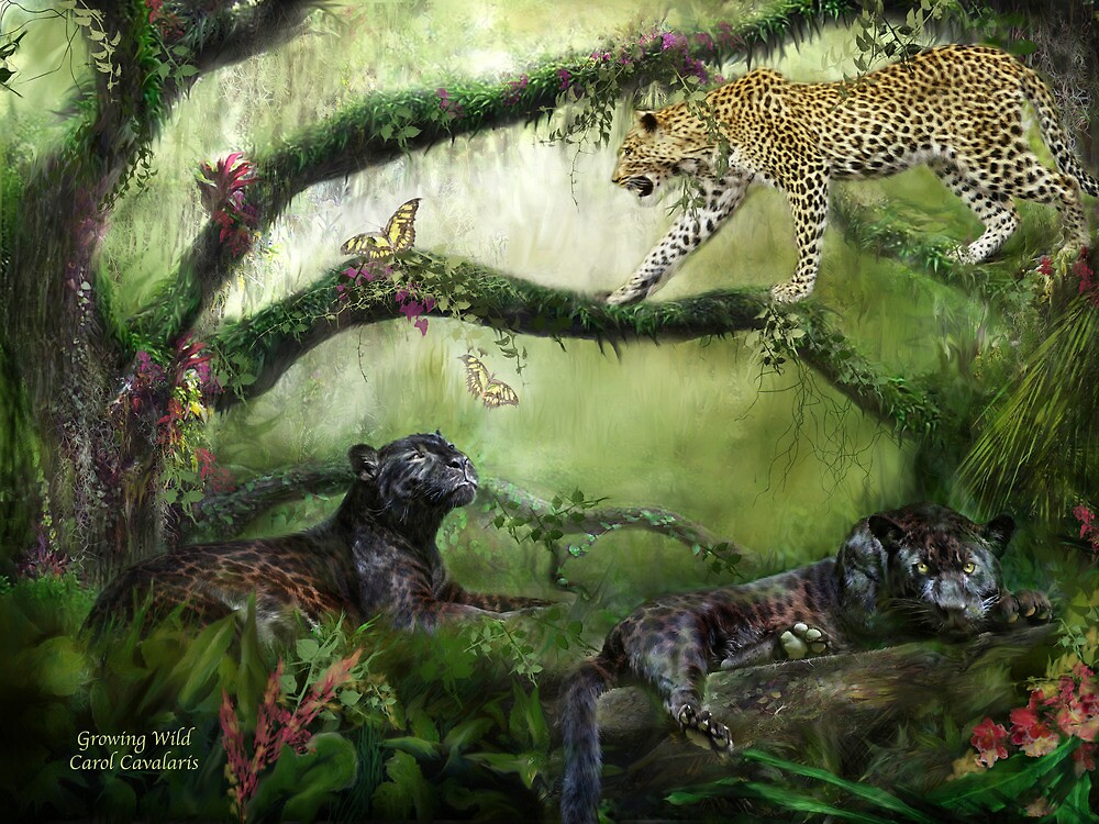 Growing Wild by Carol  Cavalaris