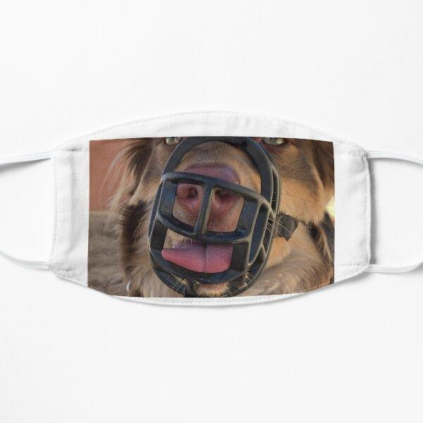 The MOGI Mask