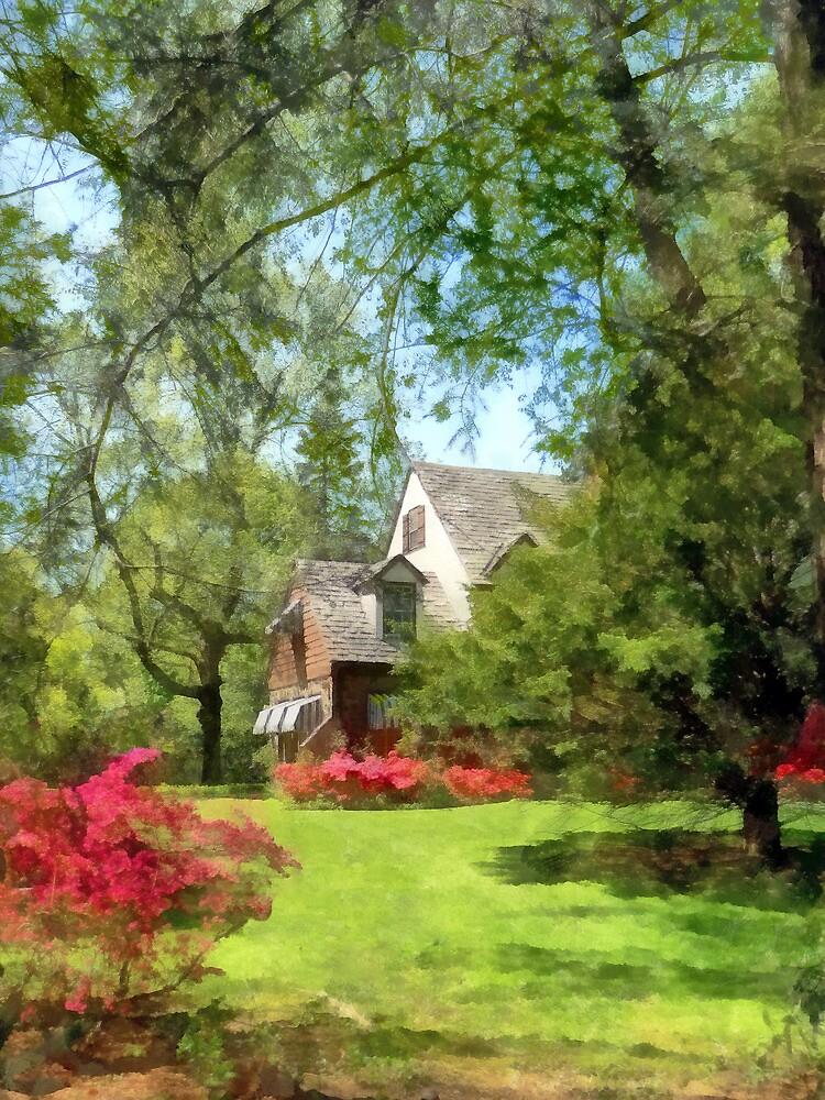 Spring - Suburban House With Azaleas by Susan Savad