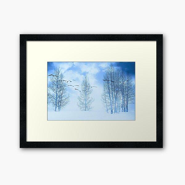Winter segals  Framed Art Print
