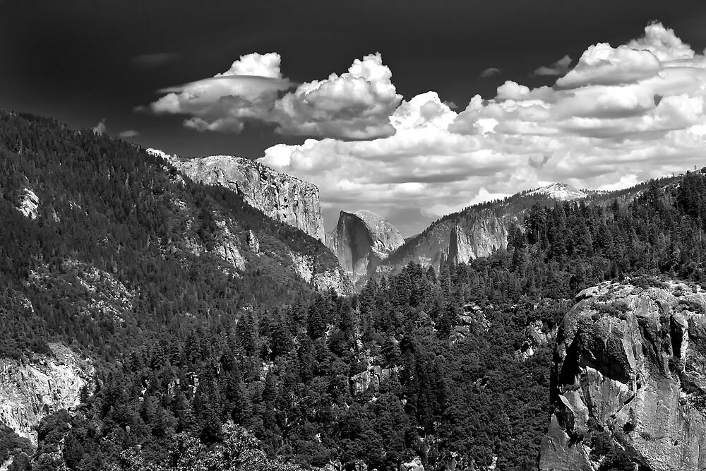 El Cap & Half Dome  by James Webb