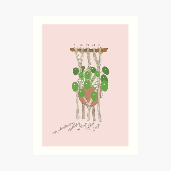 Brachial Plexus Macrame Basket Art Print