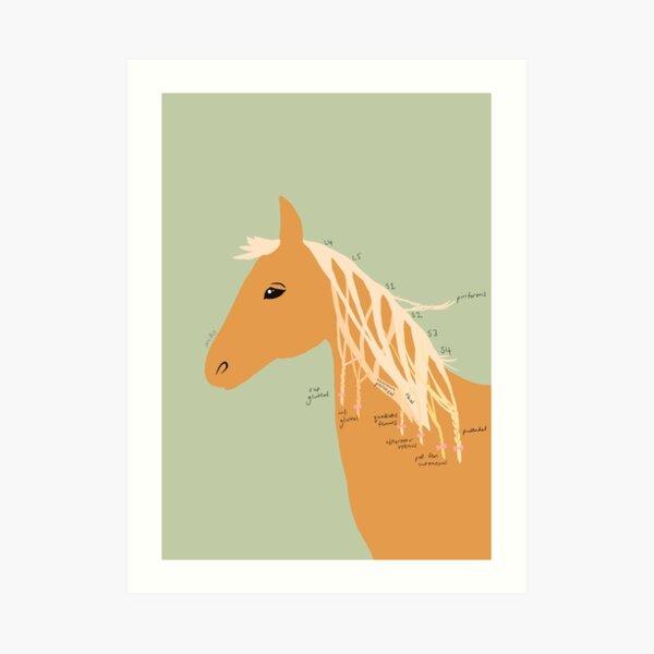 Saddle Anaesthesia Art Print