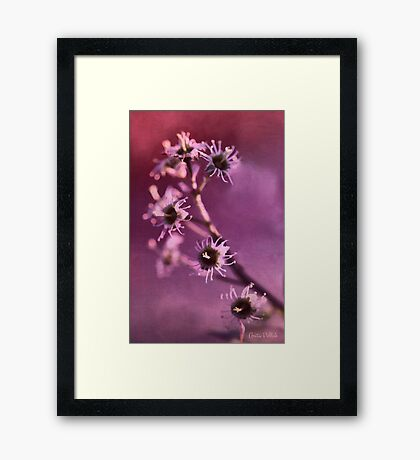 I'm Still Pretty Without My Petals! Framed Print