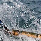Splash by nicib83