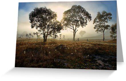 Foggy Crossing 2 by Ian English