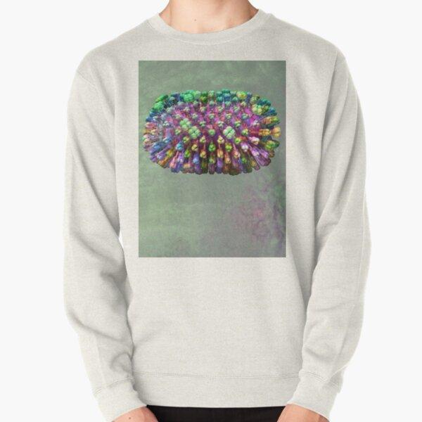 Rainbow Flu Pale Green Pullover Sweatshirt