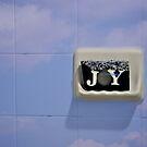 Joy by peterrobinsonjr