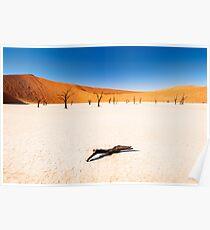 Dead Vlei, Namibia Poster