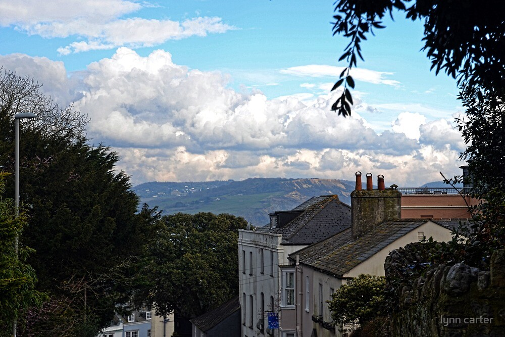 Above The Town Of Lyme , Dorset UK by lynn carter