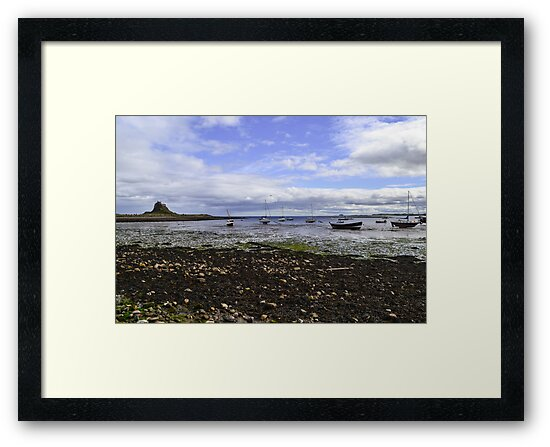 Lindisfarne Looking Across To The Castle by Dave Staton