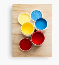Paint Pots Canvas Print