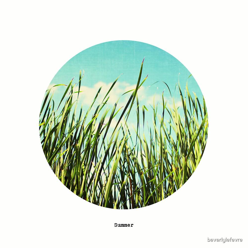 summer (seasons) by beverlylefevre