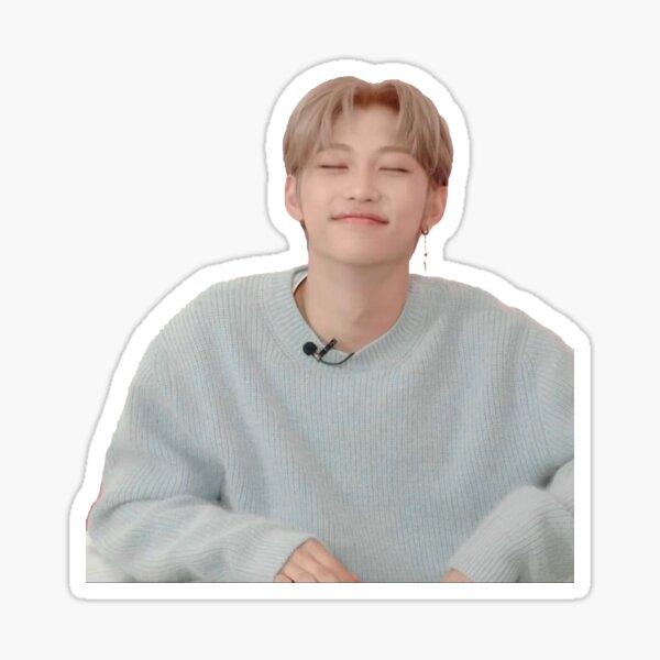 Lee Felix Stray Kids SKZ ~ Kpop Sticker Sticker