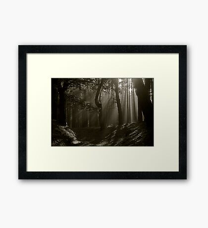 Phenomenal  Black and White  ##  Contrasting ## Perceptions . by Dr.Andrzej Goszcz . 2376 views . Thx! Featured in 5D Mark II . Framed Print