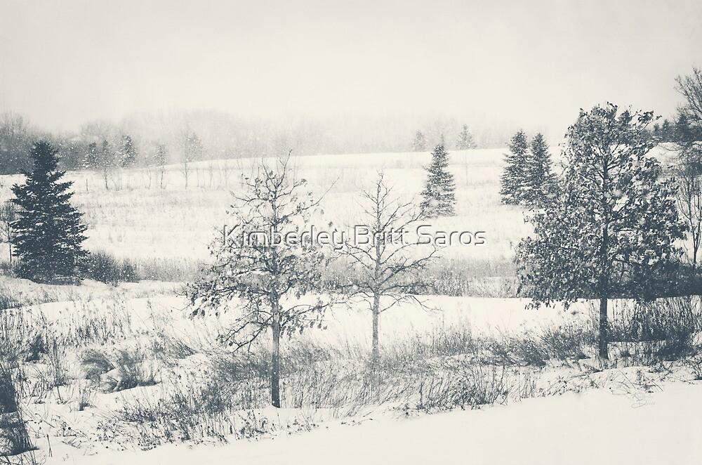 Winter Blues by KBritt