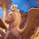 Pegasus by Casey VanDehy