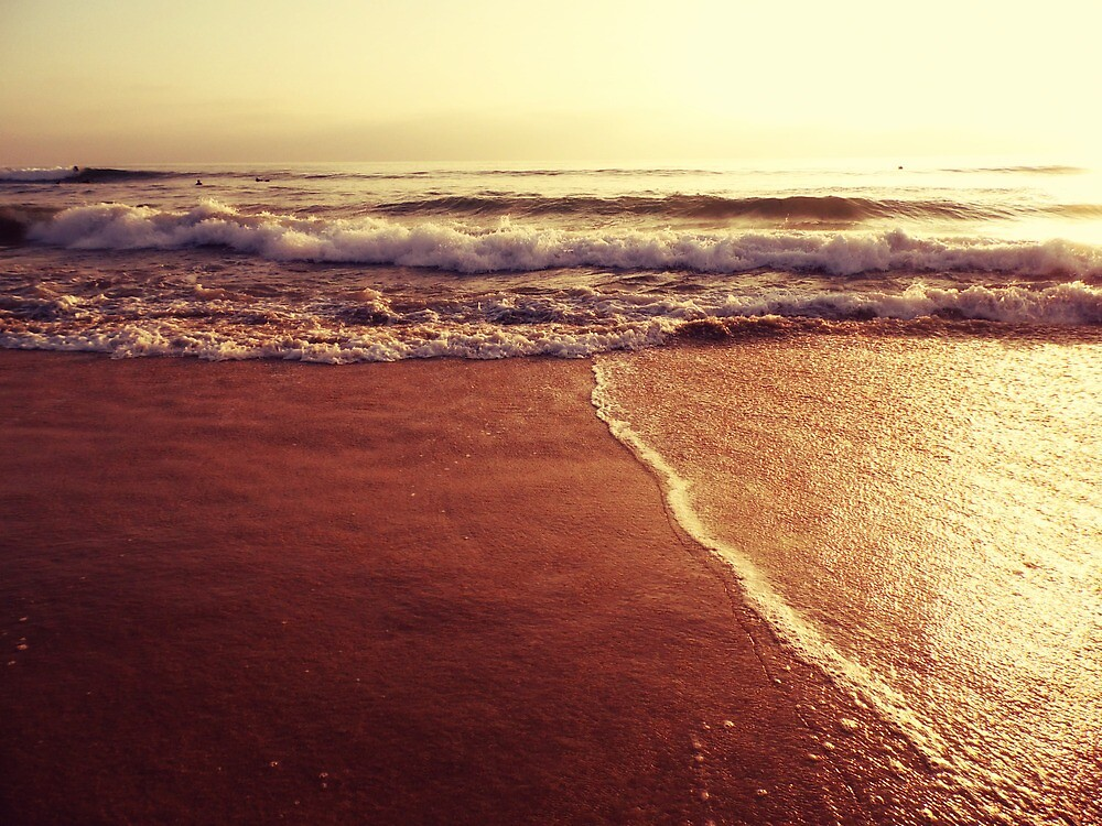 SEA #153 by Laura E  Shafer