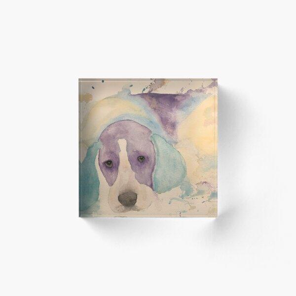 Watercolour Beagle Acrylic Block