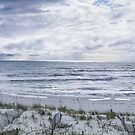 San Blas, Florida by Jarede Schmetterer