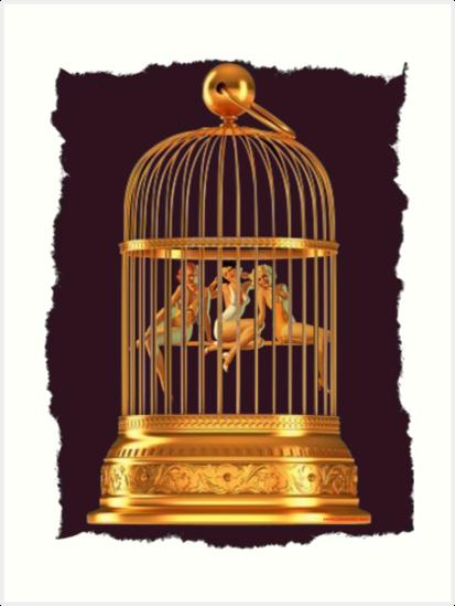 Bird Cage by sashakeen