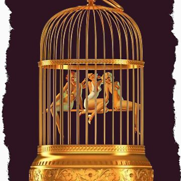 Jaula de pájaros de sashakeen