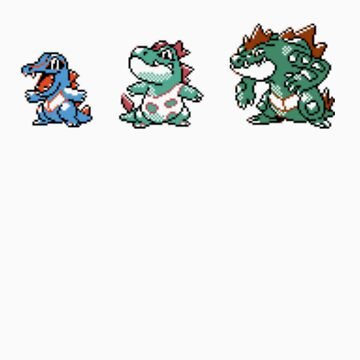 Totodile evolution  by kyokenbyo