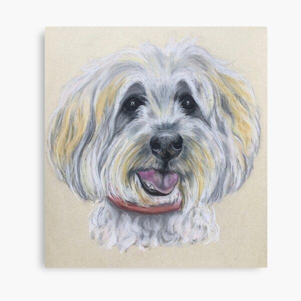 Tibetan Terrier Canvas Print