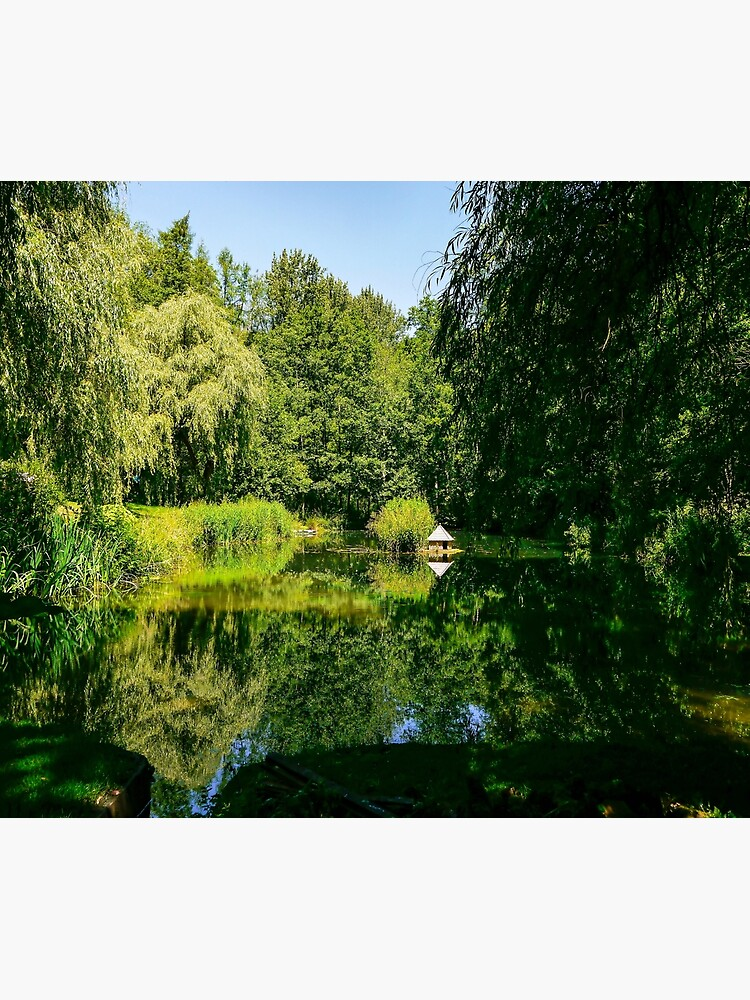 Summertime reflections.  by ScenicViewPics