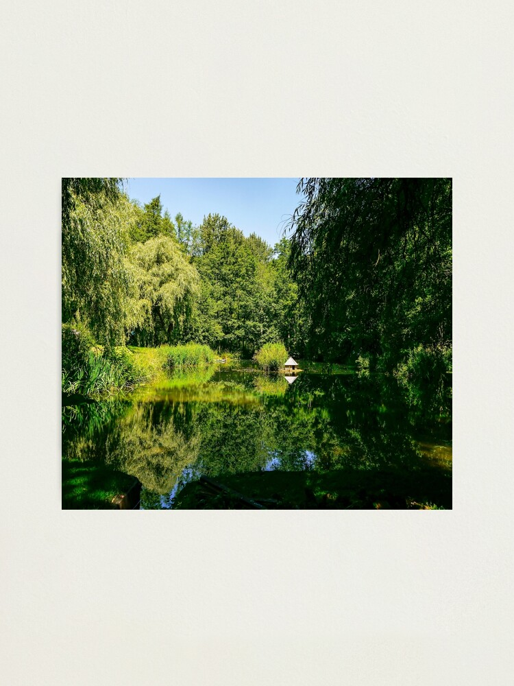 Alternate view of Summertime reflections.  Photographic Print