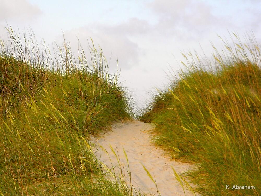 Sandy Path by K. Abraham