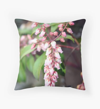 Signs of Spring - Pieris Japonica Throw Pillow