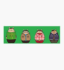 Big Bang Totoro Photographic Print
