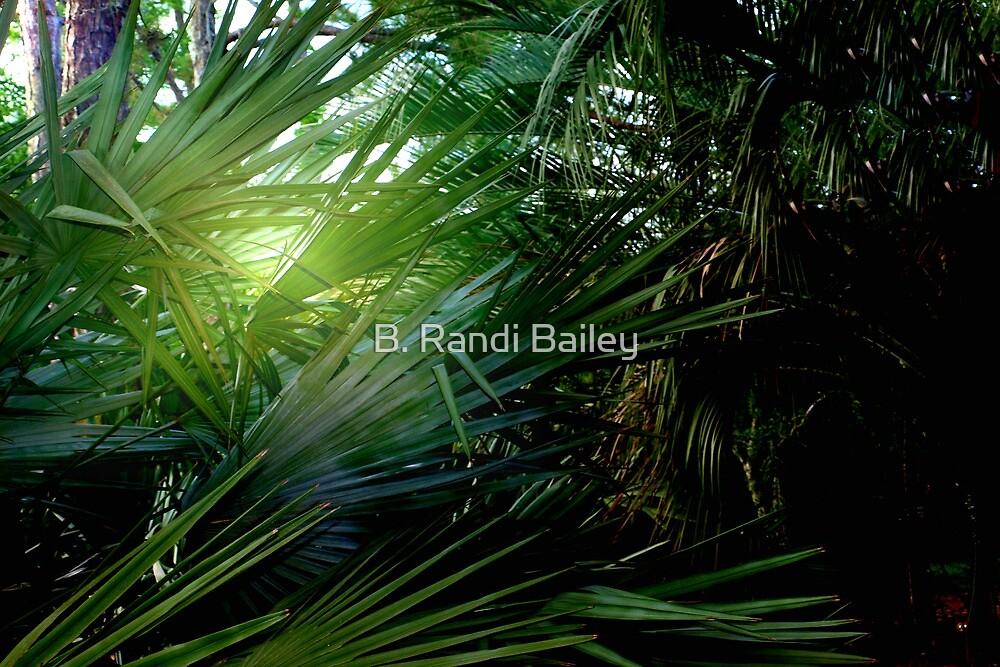 Light streaming through the palms by ♥⊱ B. Randi Bailey