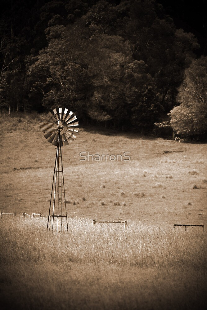 New old windmill by SharronS