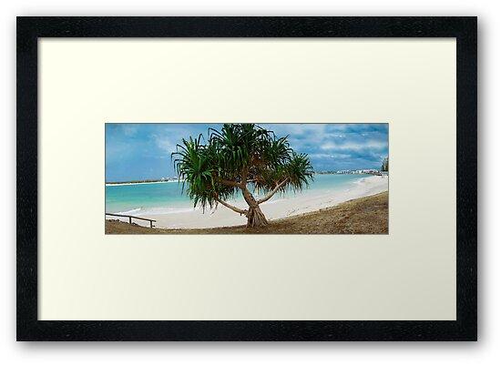 Stunning Beach Caloundra by Noel Buttler