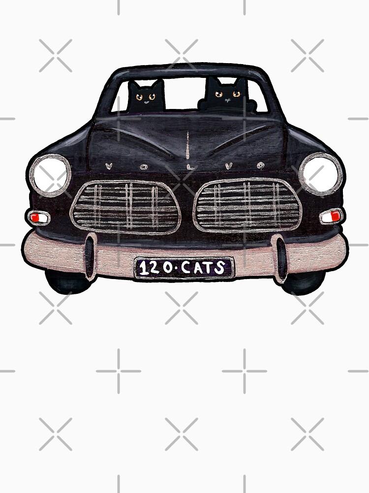 Black Volvo Cats de kilkennycat
