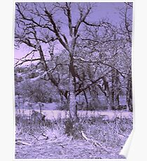 Purple Tree Poster