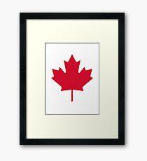 Canada | Maple leaf Framed Print