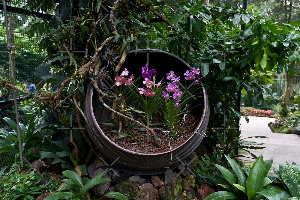 Pink and purple flowers in a slanting container by ashishagarwal74
