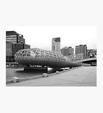 Webb bridge docklands Photographic Print