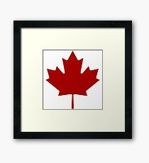Canada Maple Leaf Framed Print