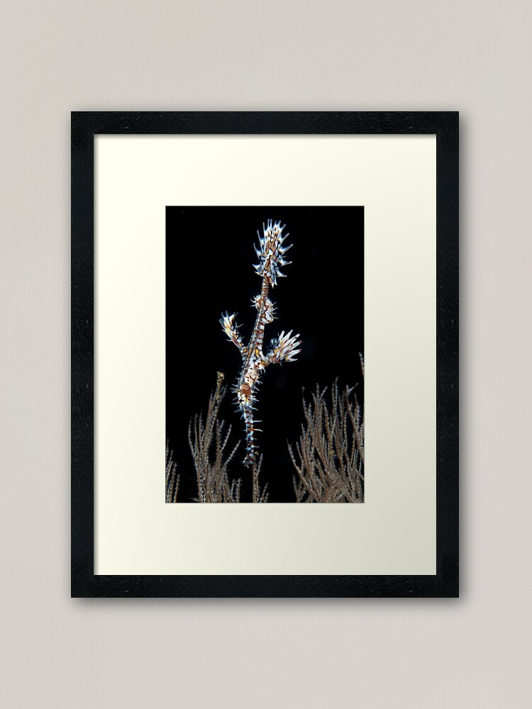 Alternate view of Waiting to pounce Framed Art Print