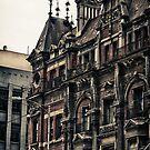 The City Of Melbourne Building by Colin  Ewington