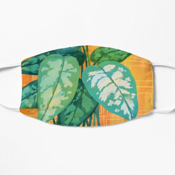 Chinese Evergreen Mask
